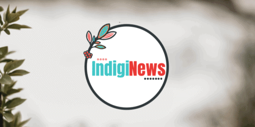 IndigiNews, new local journalism platform, launches to serve Indigenous communities